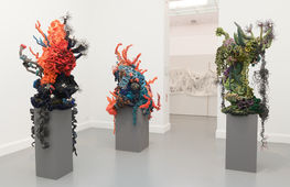 Foto van het Crochet Coral Reef, Institute for Figuring. Foto: Peter Cox
